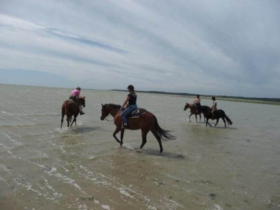 Randonnée à la mer - 17/18 juillet 2010